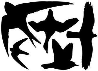 Vogelstickers