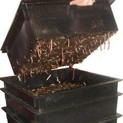 Composteren met wormen