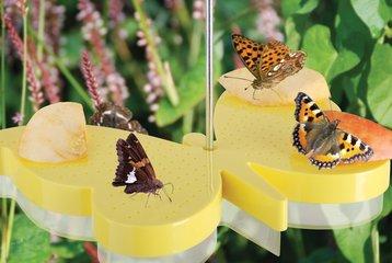Vlinders, bijen en insecten