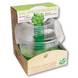 Kiembox + bio spruitgroente - 4 smaken_
