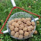 walnoten oprapen zonder bukken