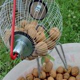 notenboom noten rapen ergonomisch