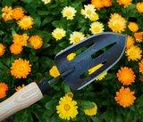 tuinschepje met open blad, DeWit online kopen