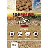 Pootaardappel Dore online bestellen