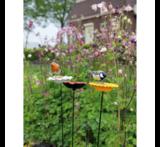 Buzzy Seeds Bird Gift Voeder Paal Zonnebloem