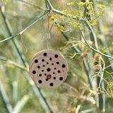 Insectenbloek rond Gorgona - Tuinspul