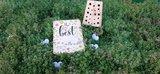 Insectenblok Navariso met kaart the best ... of the world _