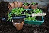 DeWit Plantguts Basic essen handvat 140mm