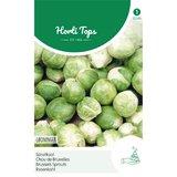 Groninger Spruitkool   Horti tops zaden