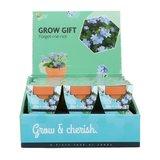 Grow Gifts Vergeet-me-niet  - Buzzy