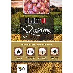 Plantuien Rosanna - 250 gram