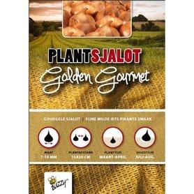 Plantsjalotten Golden Gourmet - 250 gram