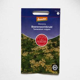 Boerenwormkruid - tamacetum vulgare