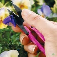 Bloemenschaartje Herbies