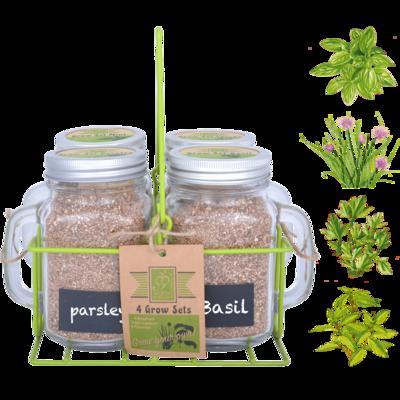 Kweekset met 4 soorten tuinkruiden in mok