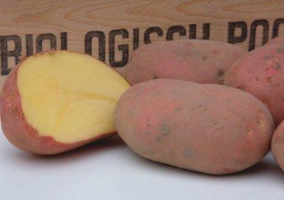 Alouette biologische pootaardappel - Kleinverpakking a 10 stuks