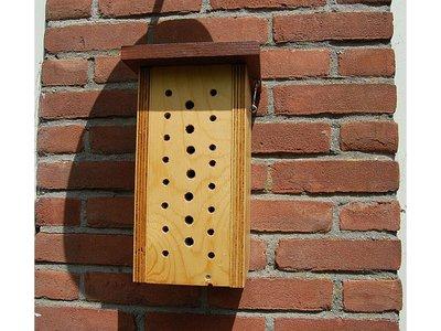 Bijenkast transparant met observatieraam!