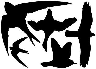 Raamstickers / vogelstickers zwart