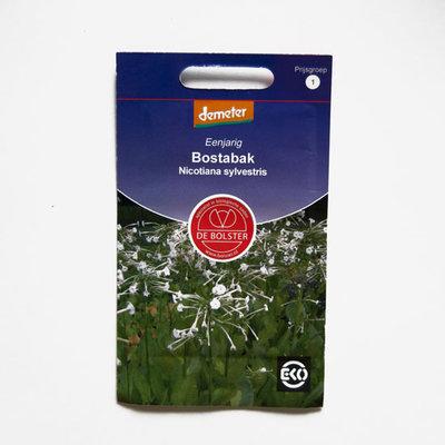 Bostabak - nicotiana sylvestris