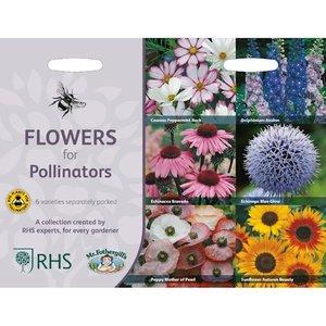 Bloemenzaden voor een bijvriendelijke tuin