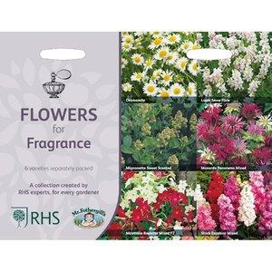 Collectie Geurende Bloemen