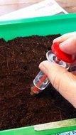 Seedsower